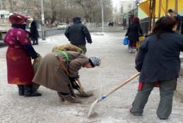 Нийслэлчүүд нийтийн эзэмшлийн 119.2 га талбайг цэвэрлэжээ