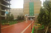 П.Н. Шастины нэрэмжит Улсын  3-р эмнэлгийн төв орцны өмнөх нийтийн эзэмшлийн талбайн тохижилтын ажил