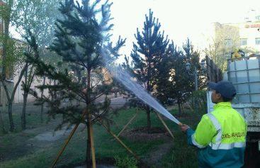 Шилмүүст моддын титэм угаах ажил хийгдэж байна